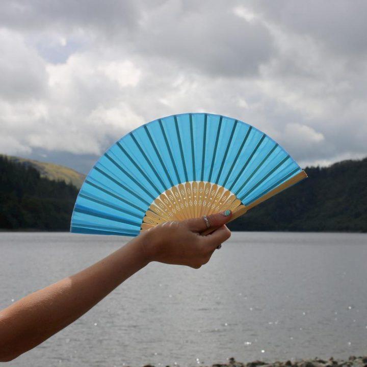 Don Hardware Silk Folding Fan