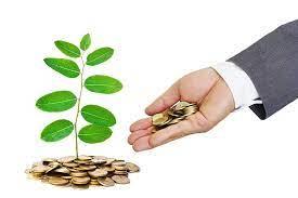 7 أفكار للشباب لبدء الأعمال التجارية برأس مال صغير !