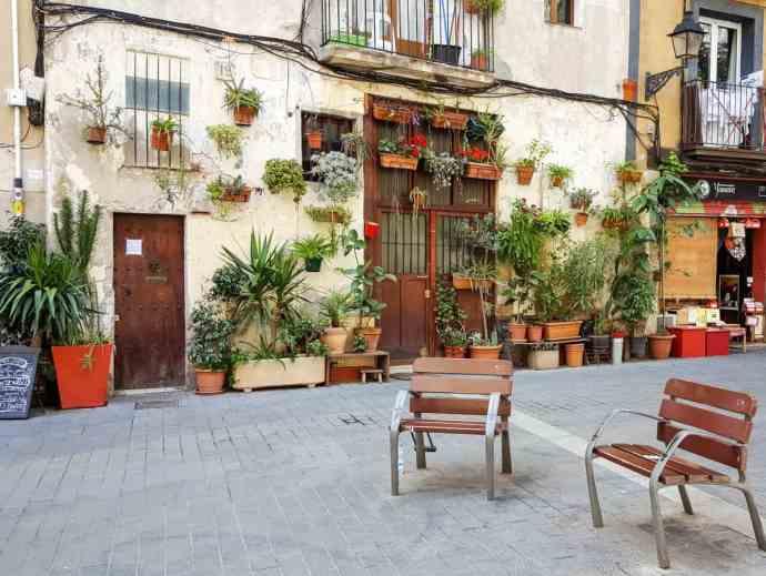 Hidden Barcelona - House plants