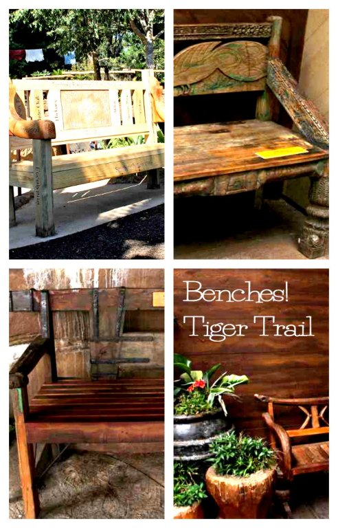 Benches-tiger-trail