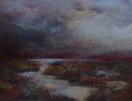 Misty mountain bog, Wicklow mountains