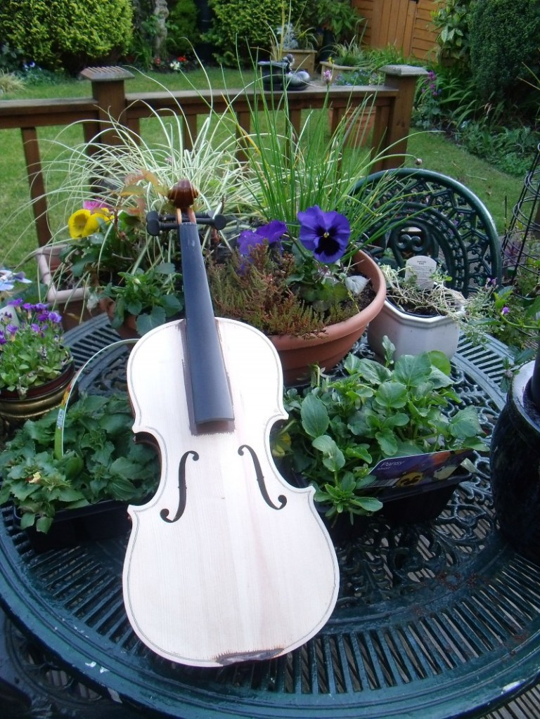 My Garden Violin , instrument art, violin art, musical art
