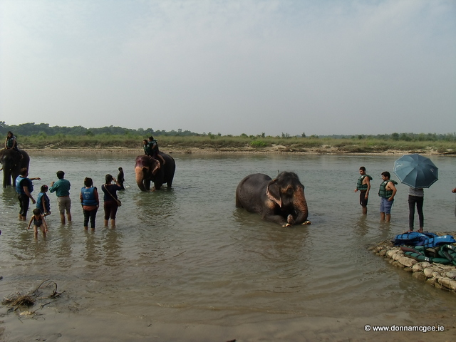Elephant Reserve - Art + Travel Adventure Nepal - Chitwan National Park - Day 1