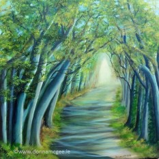 Dark Hedges - 60 x 60 cms Oil on block canvas