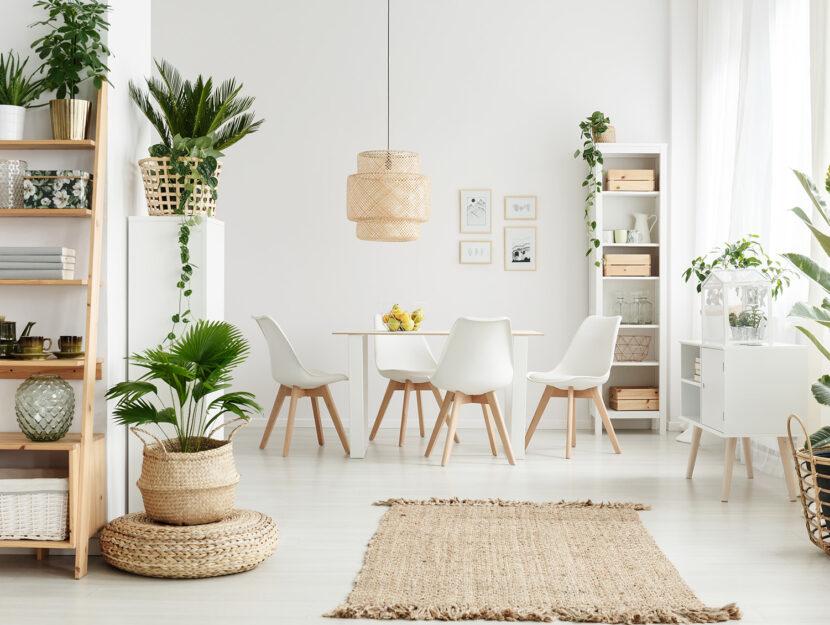Vaso decorativo per interno ed esterno. Vasi Per Piante Da Interno Di Design Tendenze 2020 Donna Moderna