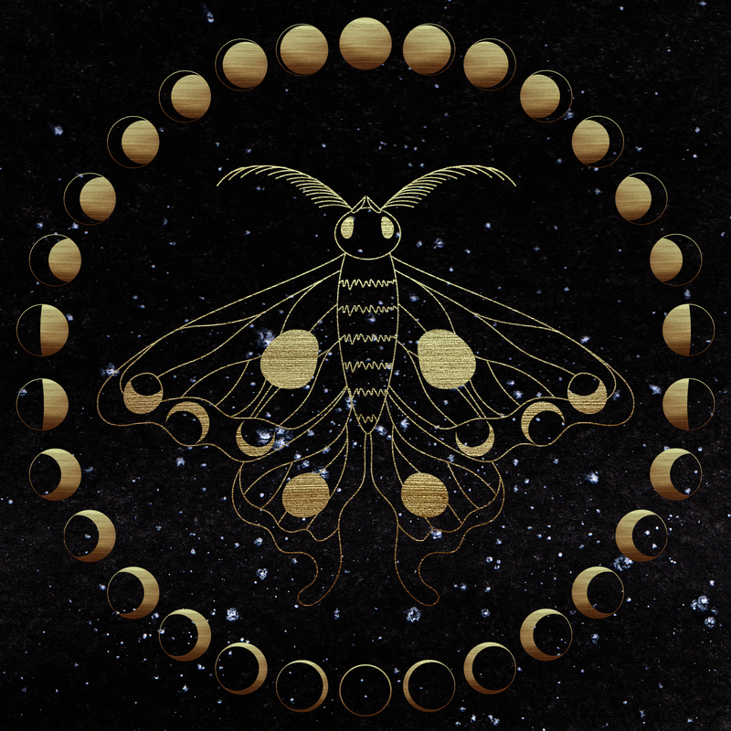 A golden moth in the center of a moon cycle