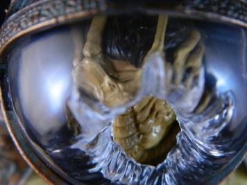 NECA Aliens S3 Kane 10