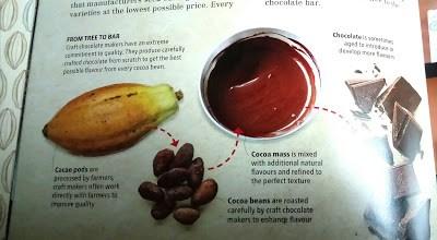 Real chocolate origins + become a pro chocoholic! Advice Health Uncategorized