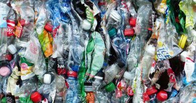 Jelentősen emelkedett az újrahasznosított hulladék mértéke