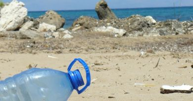 A kérészek legnagyobb ellensége a hulladék