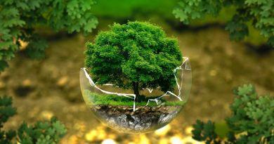 Ötödszörre rendezték meg a fenntartható energiagazdálkodás jövőjével, fejlesztési lehetőségeivel foglalkozó konferenciát