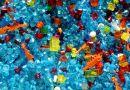 Egy kicsiny rákféle négy nap alatt lebontja a mikroműanyagot