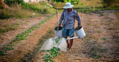 Az ökológiai gazdálkodás nem bio üzemanyag-termelés