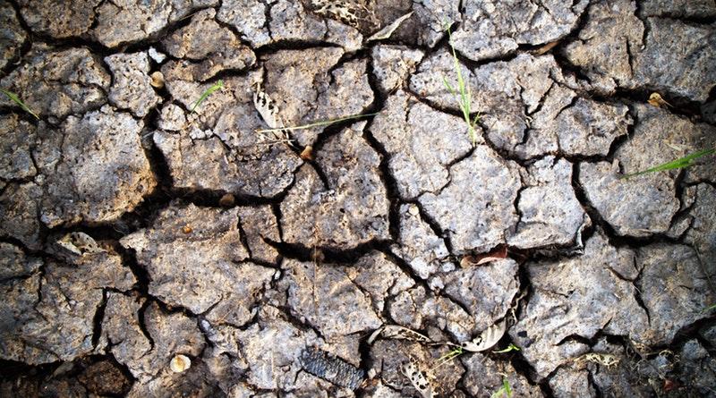 Jobban félünk a globális felmelegedéstől, mint egy újabb gazdasági válságtól