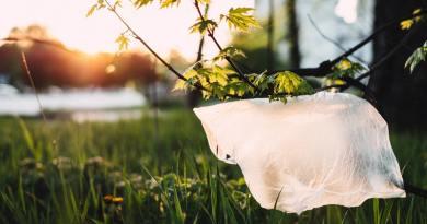 Új-Zéland is betiltja az egyszer használatos műanyag zacskókat
