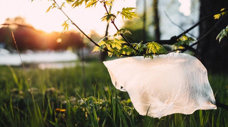 Országos környezetvédelmi szervezetek valós megoldást keresnek a műanyagszennyezésre