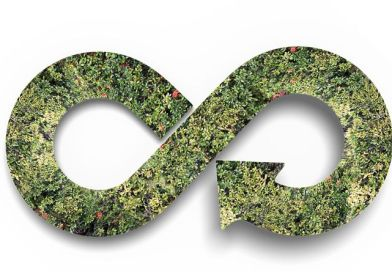 A Z-generáció kezében a zöldebb jövő