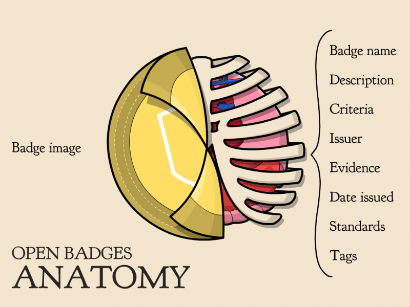 Anatomy of an Open Badge