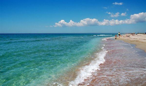 Фото море и берег: Песчаный берег моря, пейзаж