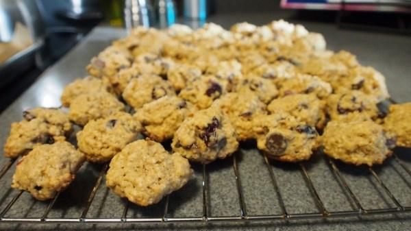 Craisin Chocolate Chip Cookies Part Deux | doomthings