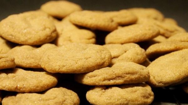 Ginger Cookies | doomthings