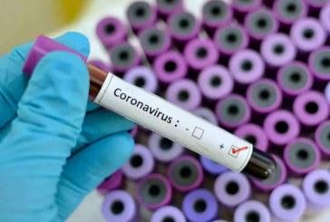 14 नए कोरोना पाॅजीटिव मामले सामने आए, राज्य में कोरोना संक्रमितों की संख्या 111 हुई