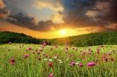 गोपश्वर: फूलों की घाटी 1 जून को खुलेगी पर्यटकों के लिए