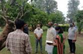 मुख्यमंत्री आवास परिसर में उद्यान विभाग द्वारा एक पेड पर आम की 42 प्रजातियों की ग्राफ्टिंग की