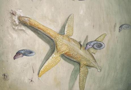 Very big marine reptile from Early Jurassic era identified in Germany