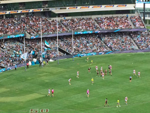 AFL fans directly behind the posts celebrate goals by waving flags. Way too civilized.