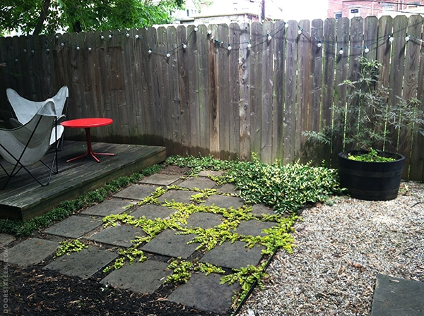 doorsixteen_gardenprogress_update4