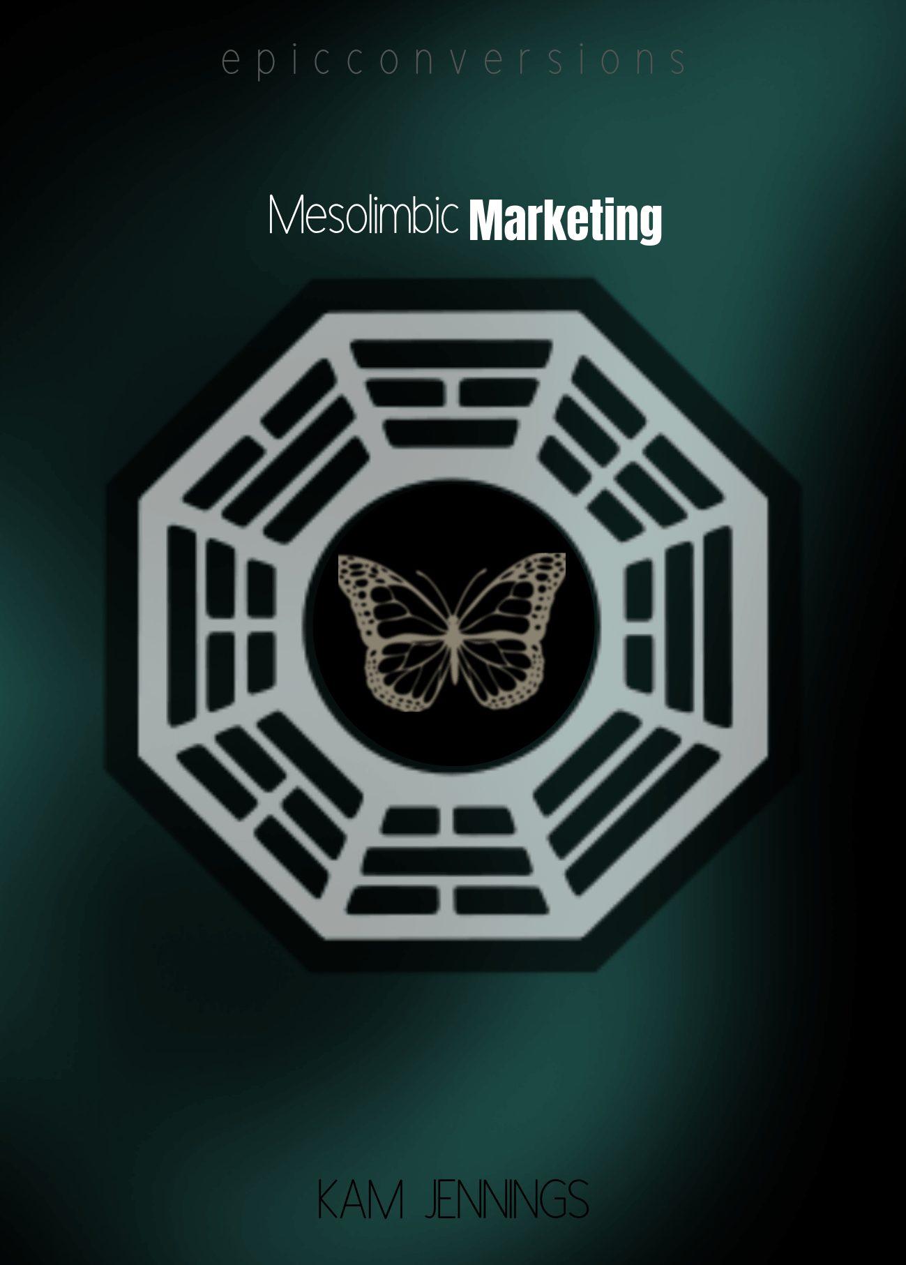 Mesolimbic Marketing Review