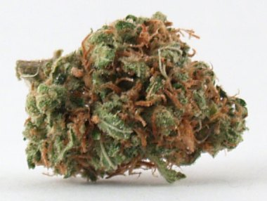 Heaven OG Kush Chronicle |