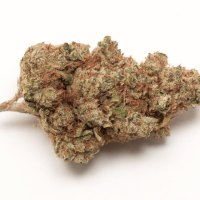 Girl Scout Cookies Chronicle