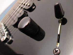 Music Man Steve Morse Model