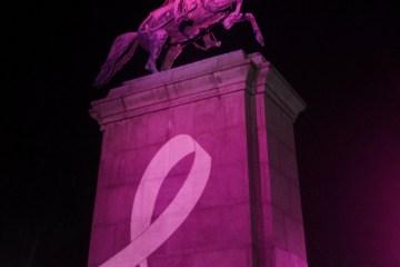 http://www.doquier.com.ar/index.php/estee-lauder-presenta-nuevo-lanzacampania-cancer-de-mama-en-monumentos-tapa