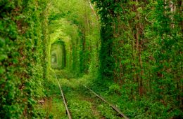 Túnel del Amor