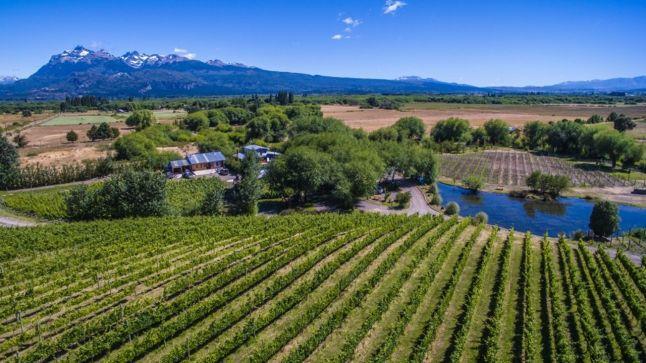 Vinos y senderismo, viajes para descubrir regiones vitivinícolas