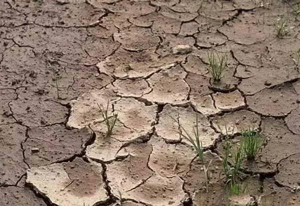 soil hardening