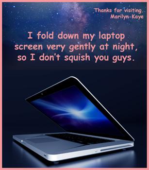 Laptop Marilyn-Kaye