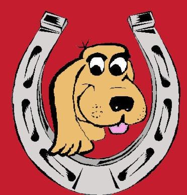 DogShoe.jpg