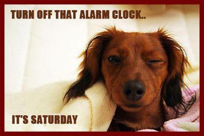 Turn off that alarm clock, it's Saturday!