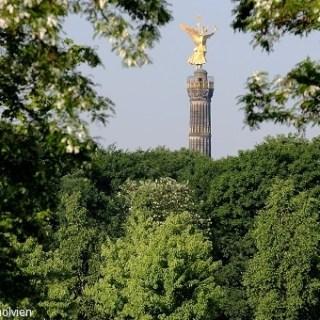 Siegessäule   Victory Column © visitBerlin, Foto: Wolfgang Scholvien