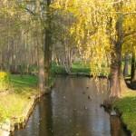 Parkfluss am Elberadweg hinter Havelberg (c) AugustusTours