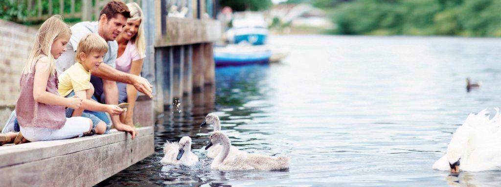 Eltern mit ihren Kindern beim Enten füttern