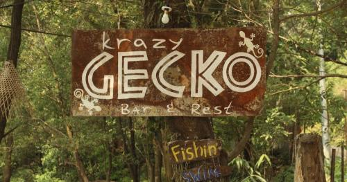 Life's a Beach…at Krazy Gecko