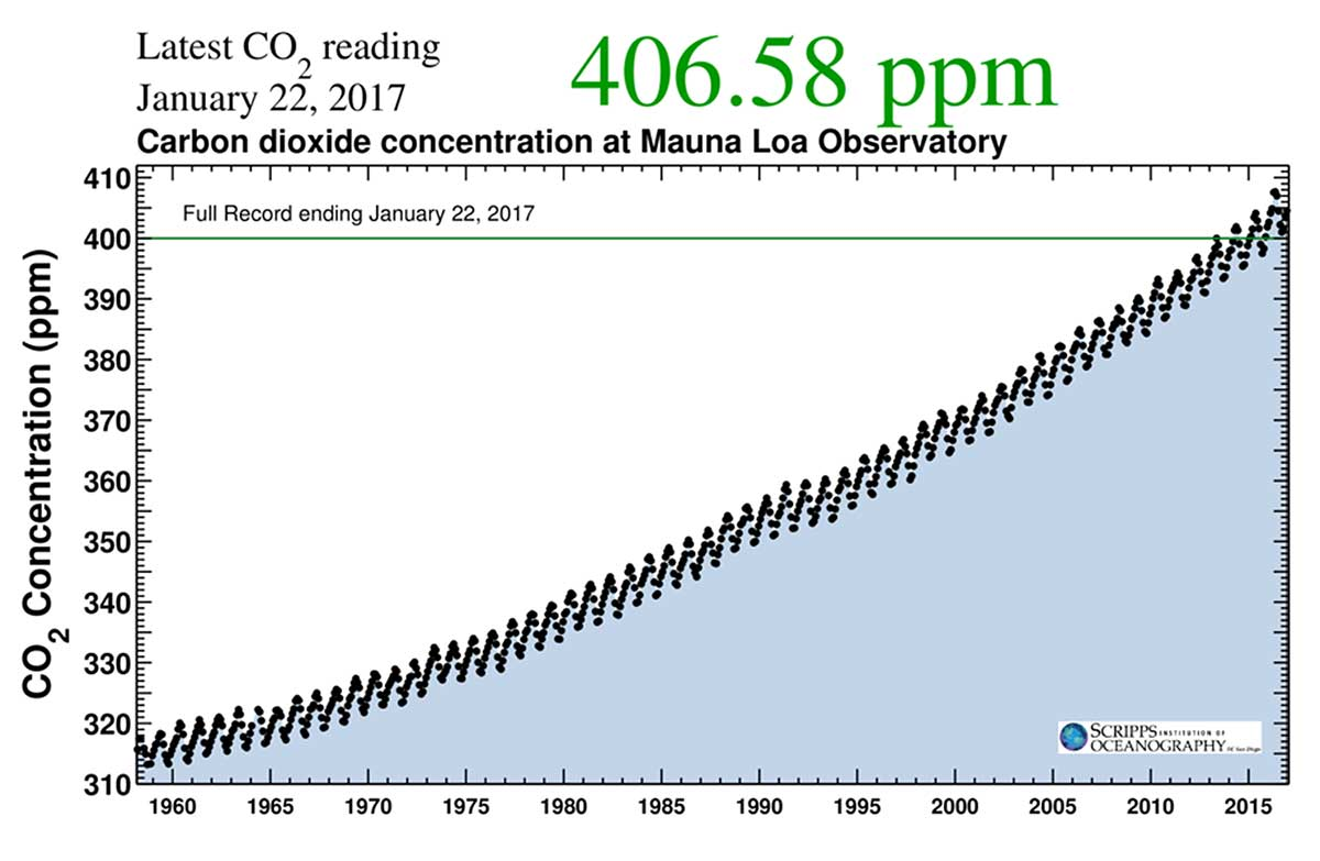 Carbon dioxide concentration at Mauna Loa Observatory