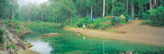 032009 Conondale National Park Booloumba Creek Falls