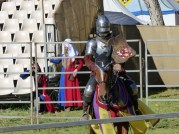 abbey-festival025