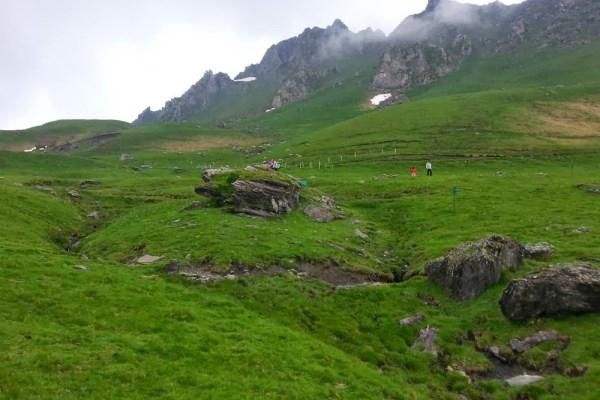 Bergweide in de Pyreneeën bij de Tourmalet in Frankrijk